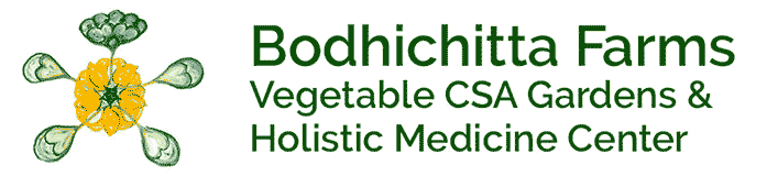 Bodhichitta Farms Vegetable CSA Gardens and Holistic Medicine Center